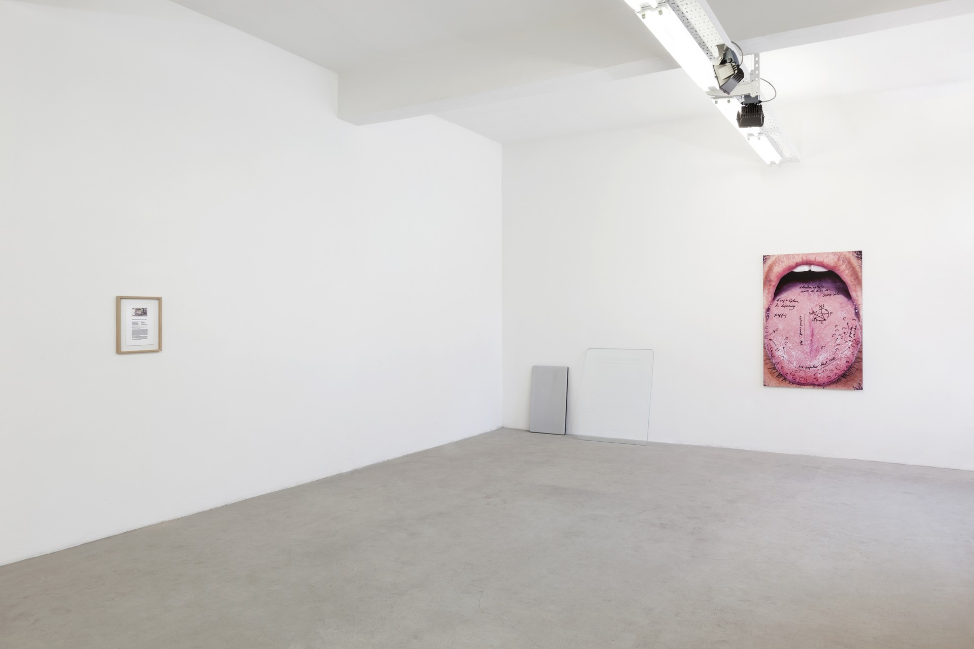 "<i>"" RR  ZZ ""</i>, installation view at Gluck50, Milan. Courtesy of Gluck50. Ph. Andrea Rossetti"